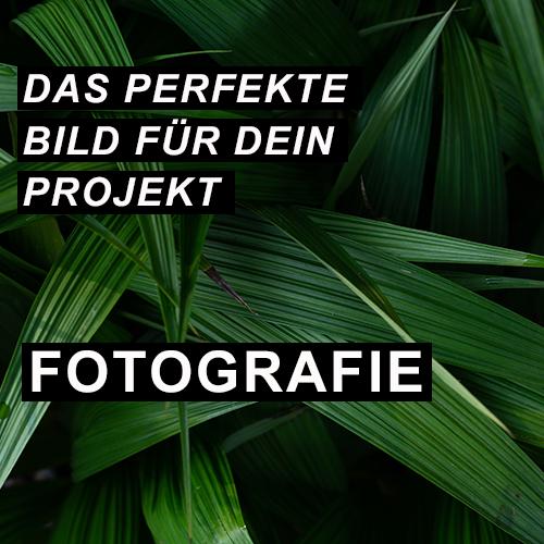 Das perfekte Bild für dein Projekt - Fotografie