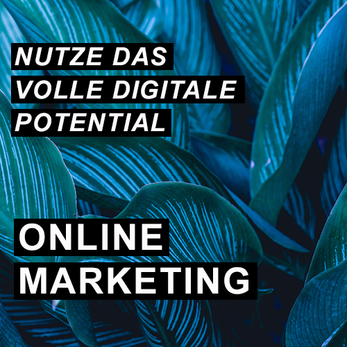 Nutze das volle digitale Potential - Online Marketing