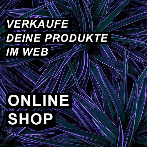 Verkaufe deine Produkte im Web - Online Shop